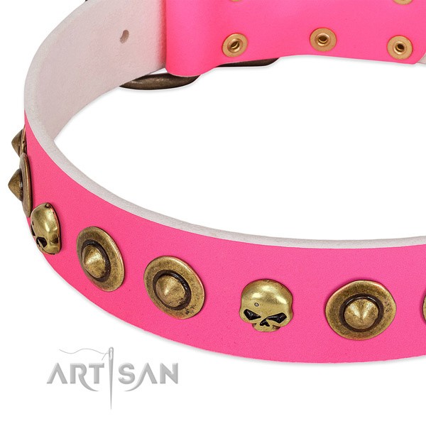 Extraordinary adornments on full grain natural leather collar for your canine