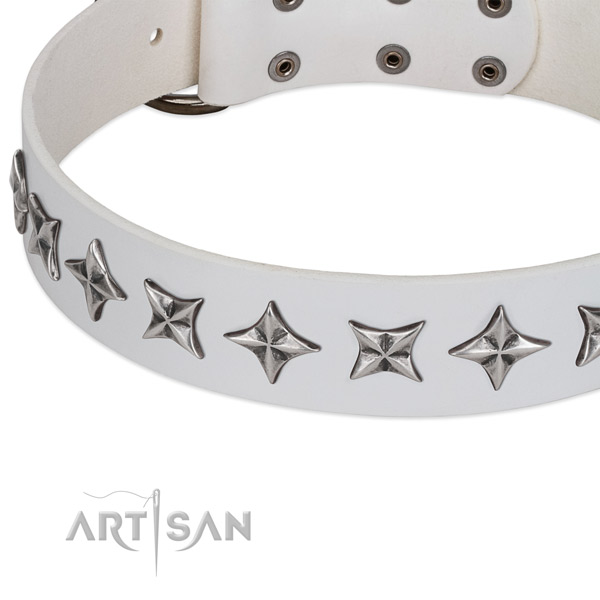 Everyday walking studded dog collar of durable genuine leather