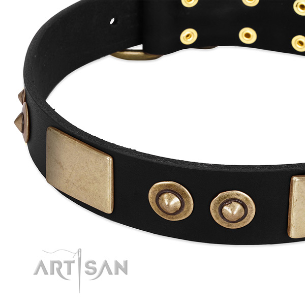 Corrosion resistant buckle on genuine leather dog collar for your doggie