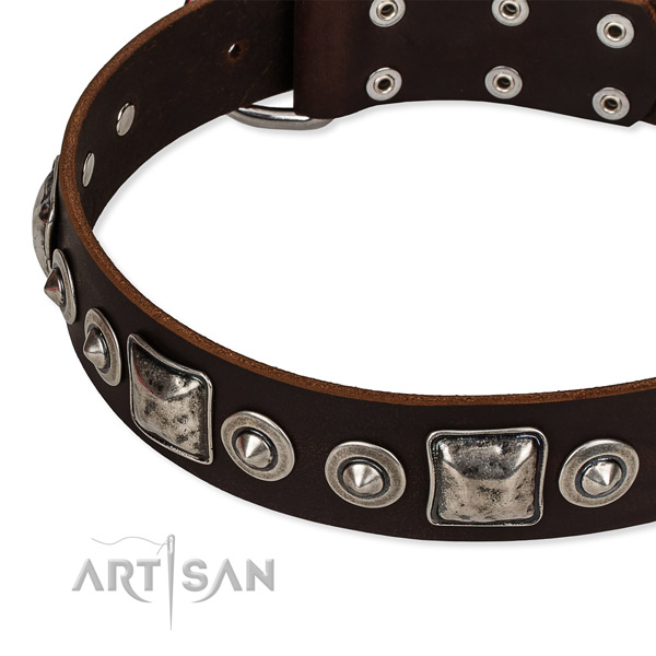 Full grain natural leather dog collar made of gentle to touch material with decorations