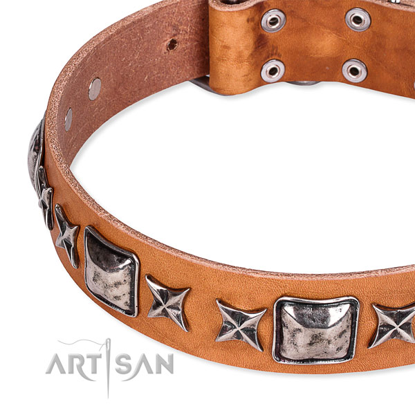 Comfortable wearing adorned dog collar of reliable full grain genuine leather