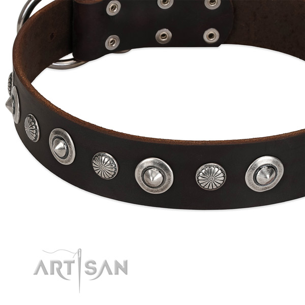 Incredible studded dog collar of quality full grain leather