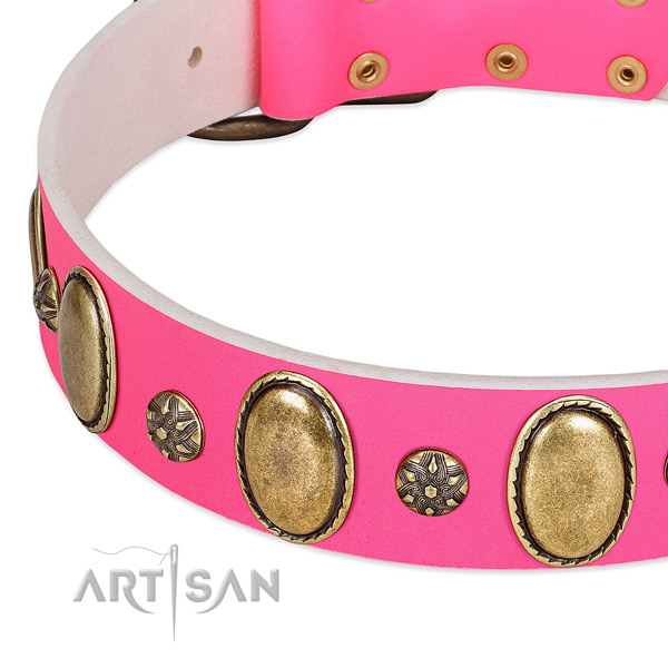 Quality leather dog collar with reliable fittings