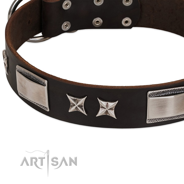 Remarkable collar of genuine leather for your handsome pet