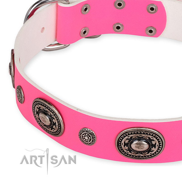 Natural genuine leather dog collar with stunning durable studs