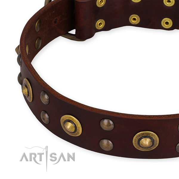 Genuine leather collar with rust-proof buckle for your stylish doggie