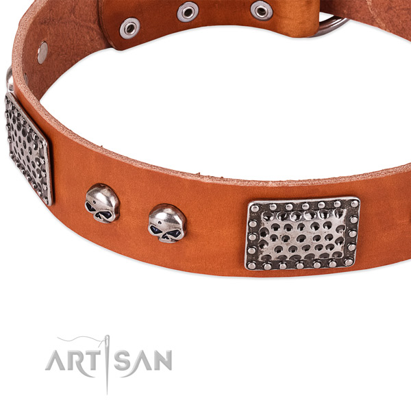 Durable embellishments on leather dog collar for your doggie