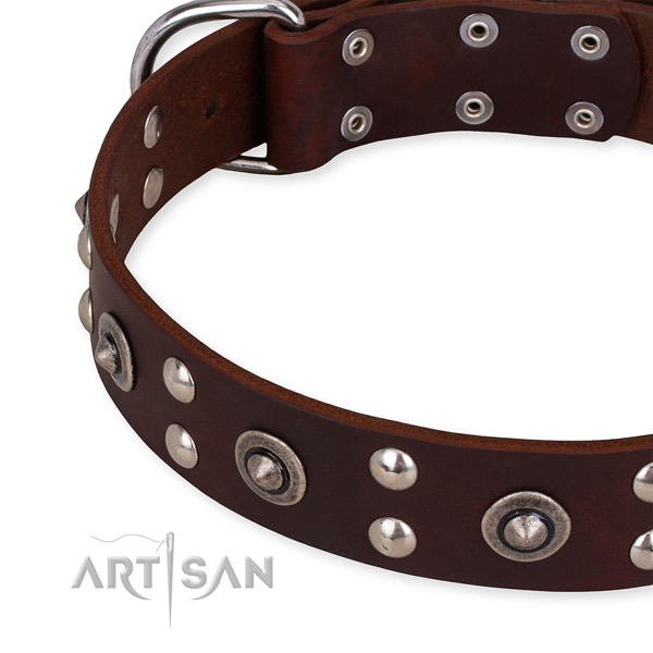 Full grain natural leather collar with strong fittings for your stylish doggie