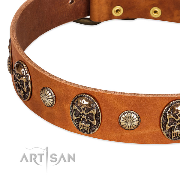 Reliable decorations on full grain genuine leather dog collar for your doggie