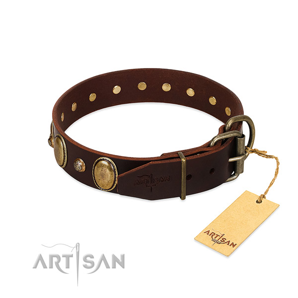 Durable D-ring on full grain genuine leather collar for everyday walking your four-legged friend