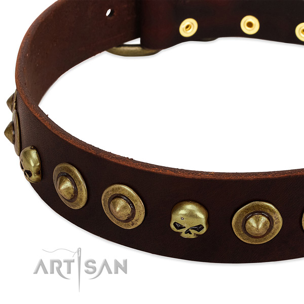 Stunning embellishments on genuine leather collar for your canine
