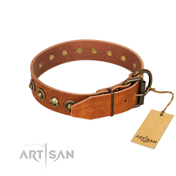 Full grain leather collar with inimitable embellishments for your canine