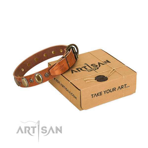 Daily walking soft to touch full grain natural leather dog collar with adornments