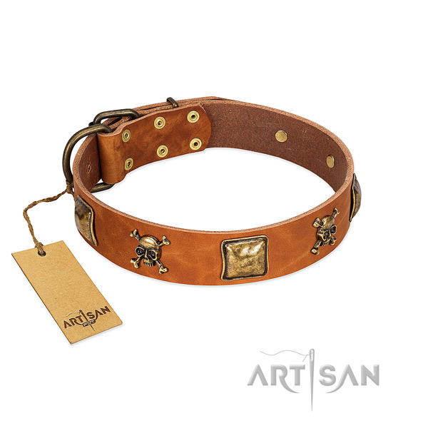 Awesome full grain genuine leather dog collar with reliable embellishments