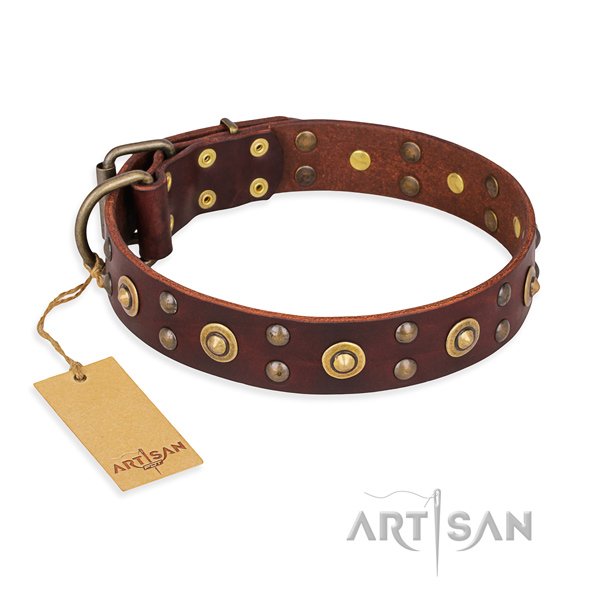 Adorned genuine leather dog collar with corrosion resistant buckle