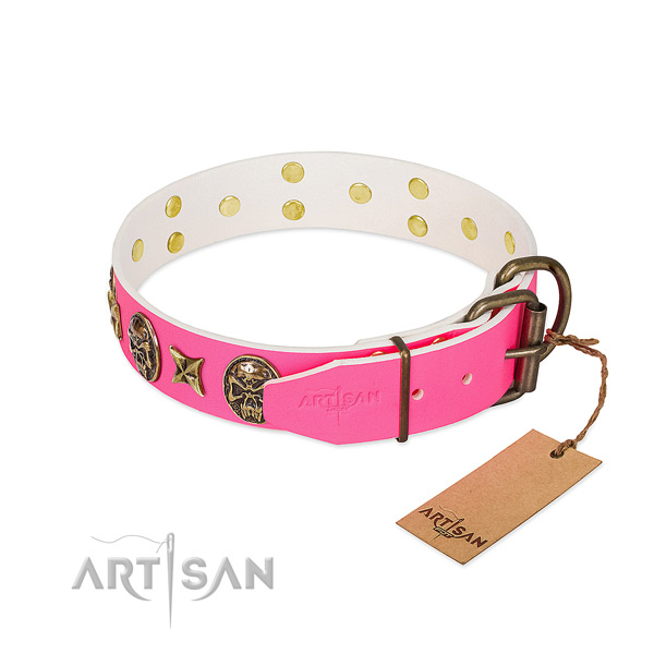 Corrosion resistant D-ring on leather collar for daily walking your four-legged friend
