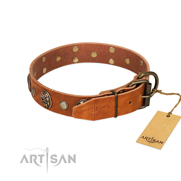 Rust-proof buckle on genuine leather collar for walking your canine