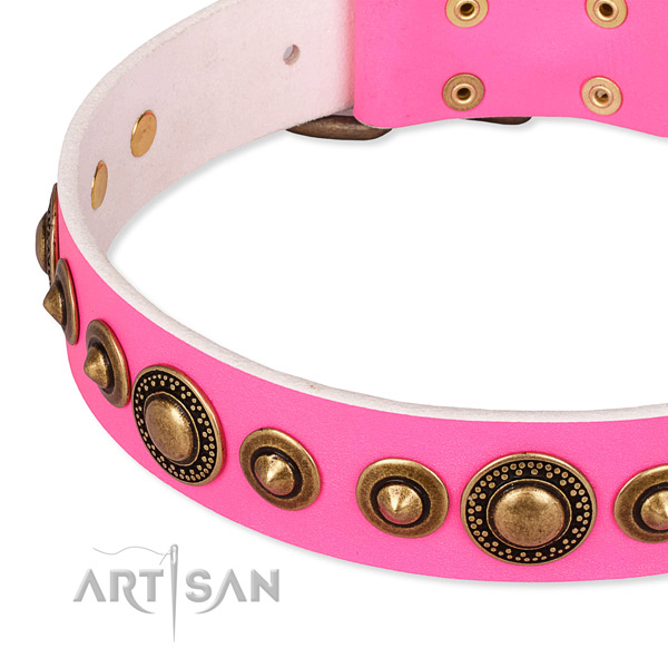Top rate genuine leather dog collar created for your stylish pet