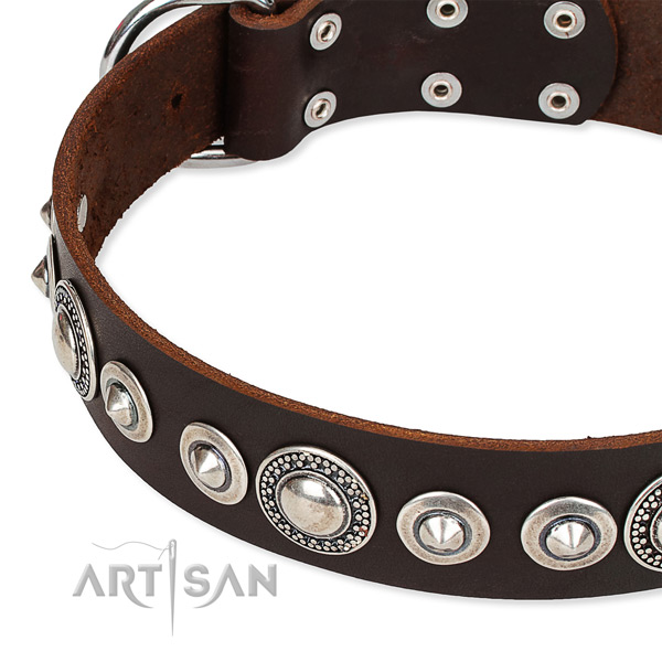 Walking adorned dog collar of top notch full grain genuine leather