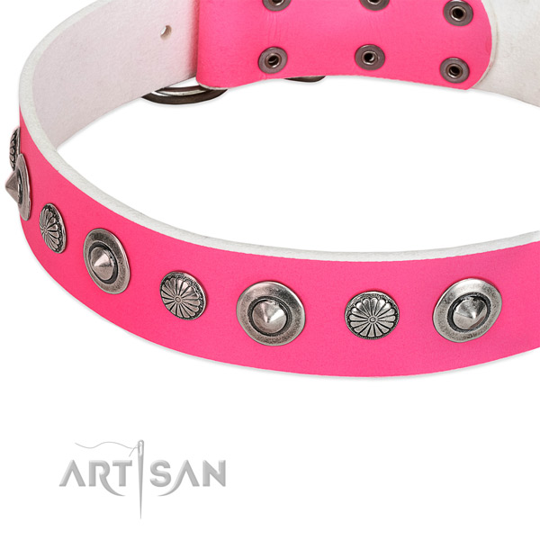 Full grain natural leather collar with rust resistant D-ring for your stylish four-legged friend