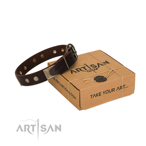 Rust resistant traditional buckle on dog collar for walking