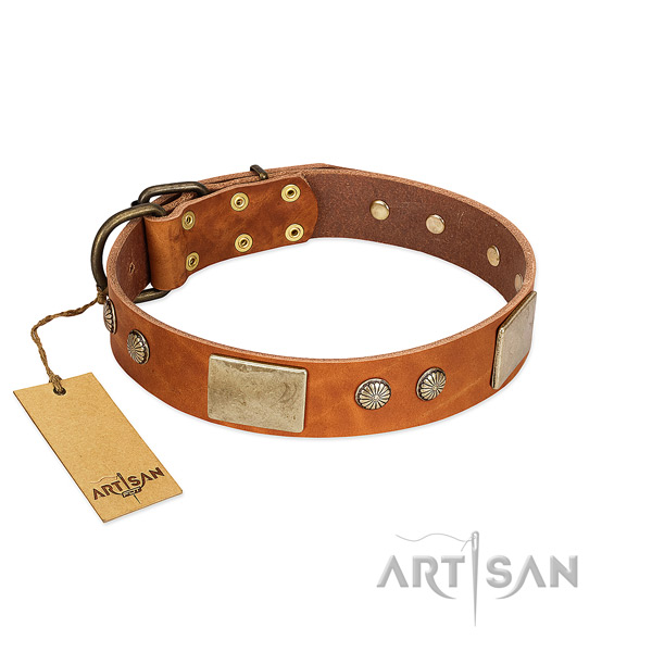 Easy wearing genuine leather dog collar for daily walking your doggie