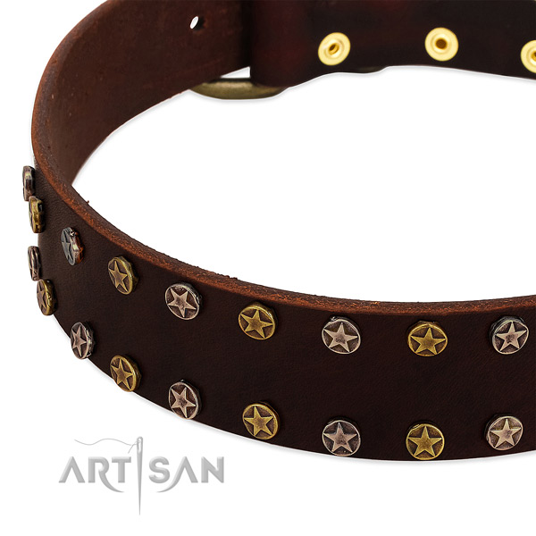 Stylish walking full grain natural leather dog collar with remarkable decorations