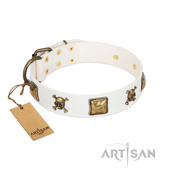 Stunning full grain leather dog collar with corrosion resistant adornments