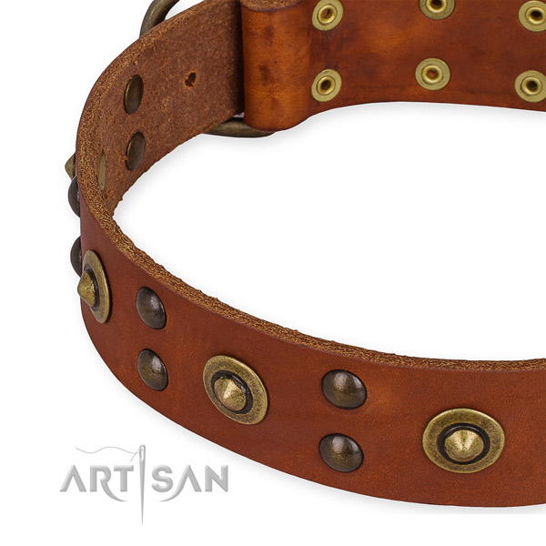 Full grain natural leather collar with durable fittings for your beautiful dog