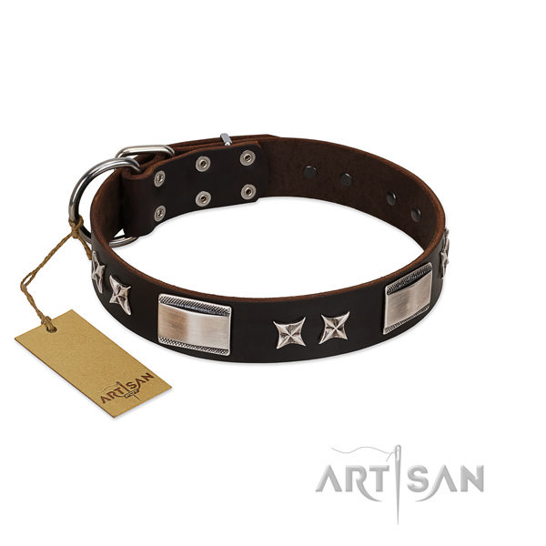 Handcrafted dog collar of natural leather