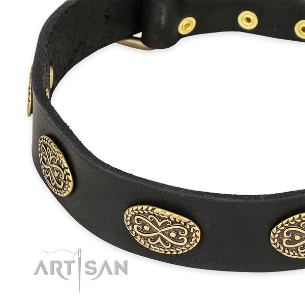 Designer full grain leather collar for your beautiful pet