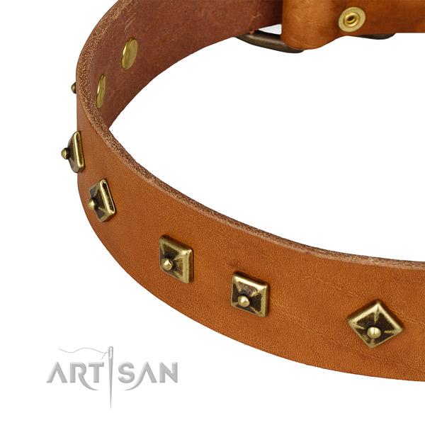 Adorned genuine leather collar for your handsome dog