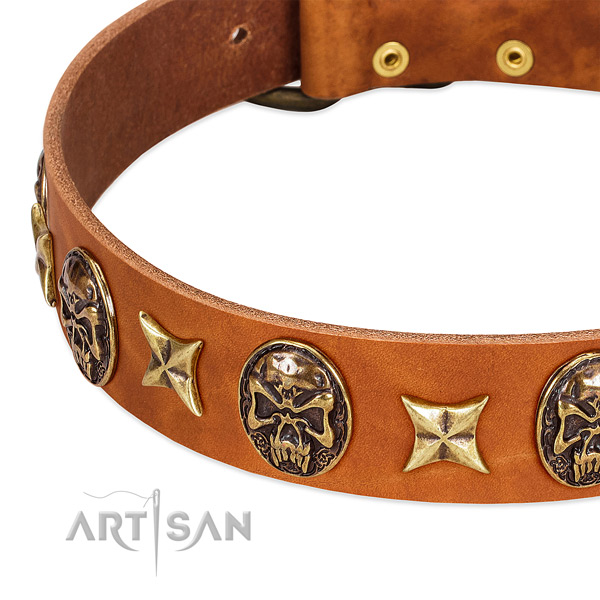 Durable traditional buckle on genuine leather dog collar for your four-legged friend