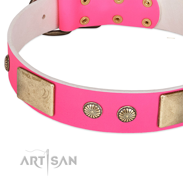 Strong traditional buckle on natural leather dog collar for your canine