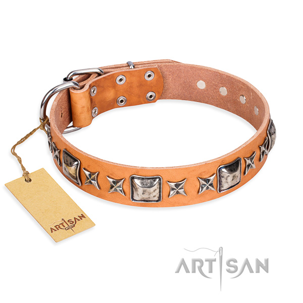 Handy use dog collar of high quality genuine leather with studs