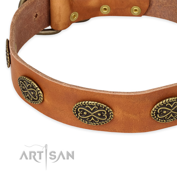 Amazing natural genuine leather collar for your impressive canine