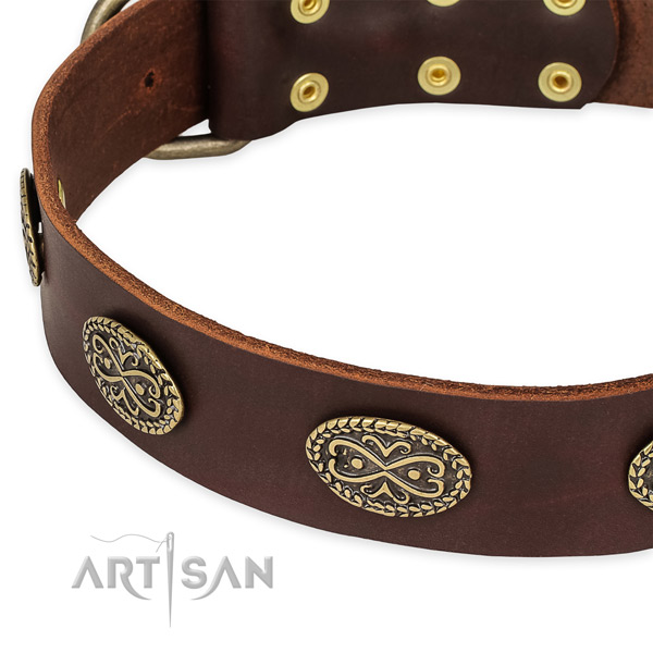 Amazing natural genuine leather collar for your stylish doggie