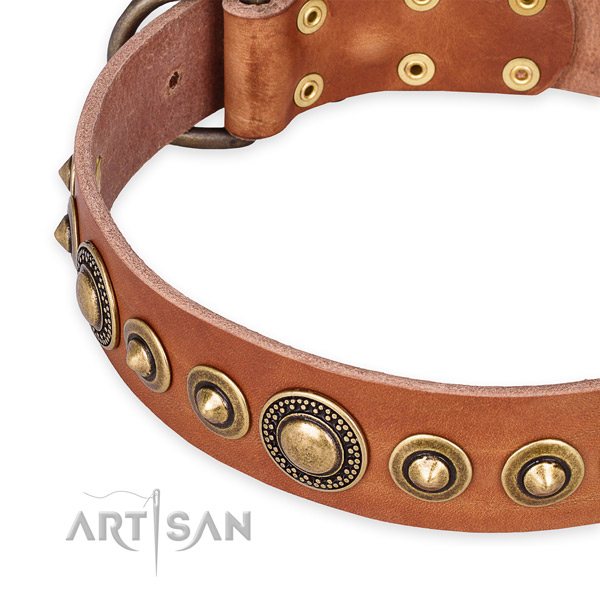Reliable genuine leather dog collar crafted for your handsome dog