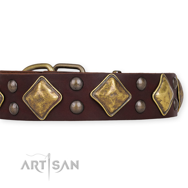Genuine leather dog collar with incredible reliable decorations