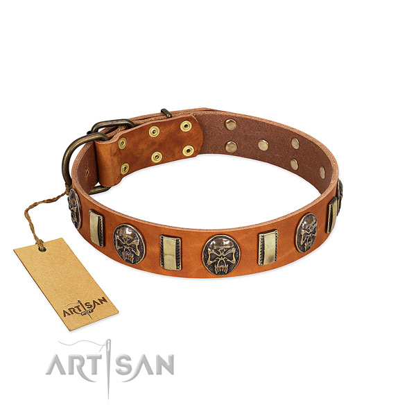 Handcrafted full grain genuine leather dog collar for daily use
