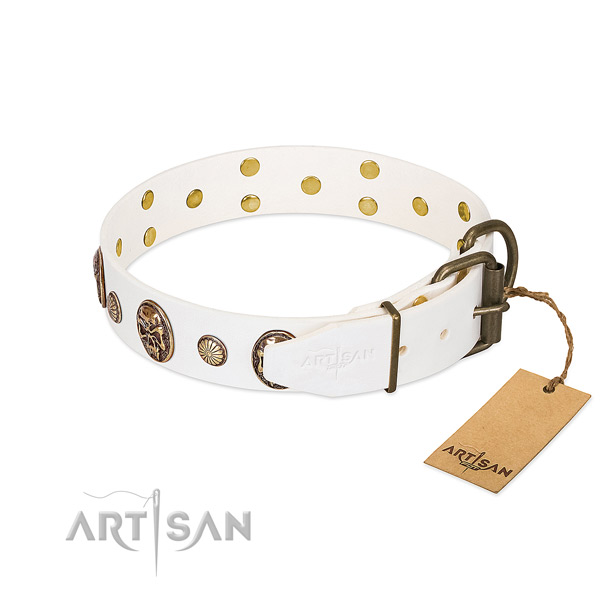 Rust resistant D-ring on full grain natural leather collar for stylish walking your pet