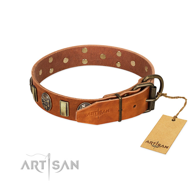Leather dog collar with rust resistant hardware and adornments