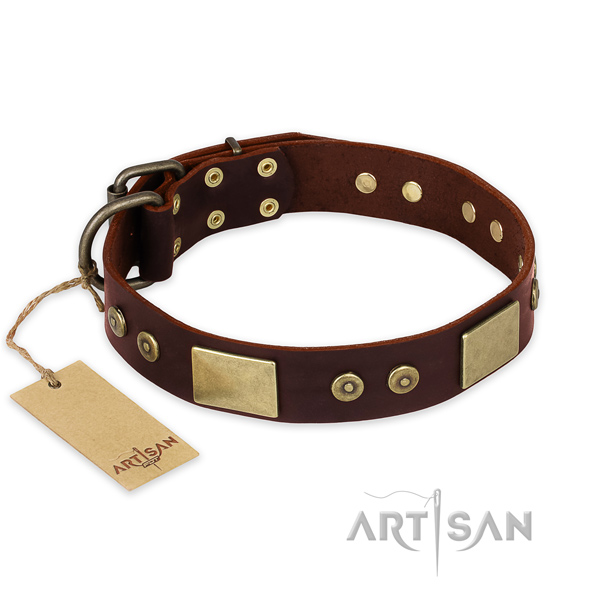 Awesome natural genuine leather dog collar for daily walking