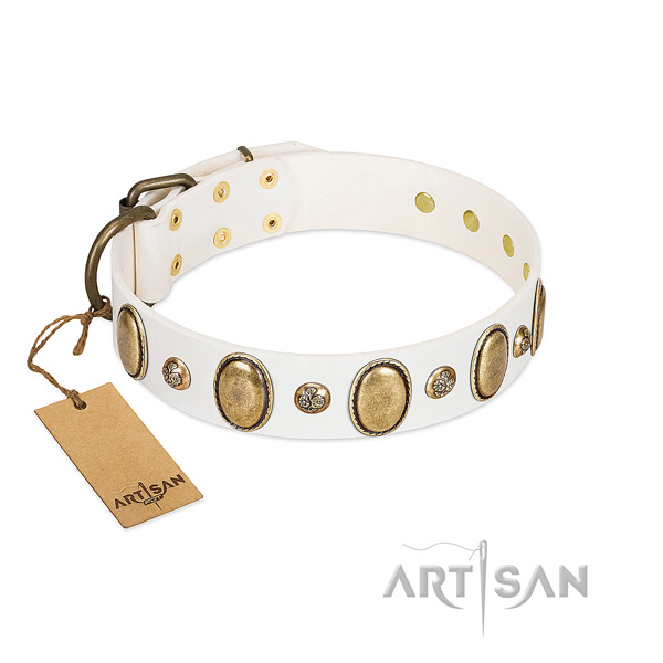 Full grain genuine leather dog collar of quality material with stunning embellishments