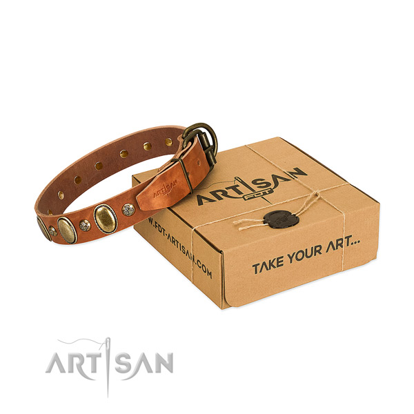 Stylish full grain natural leather dog collar with corrosion proof fittings