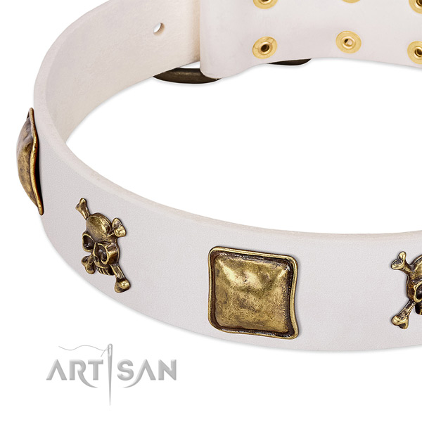Stylish leather dog collar with reliable adornments