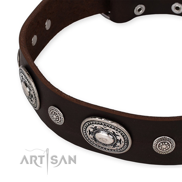 Reliable genuine leather dog collar crafted for your stylish pet