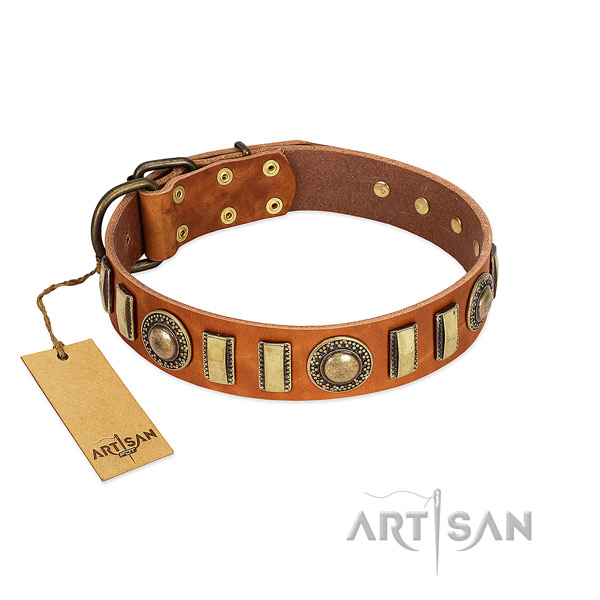 Exceptional full grain genuine leather dog collar with corrosion resistant fittings