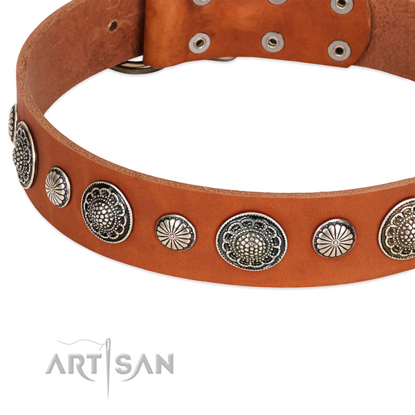 Full grain genuine leather collar with rust resistant traditional buckle for your stylish doggie