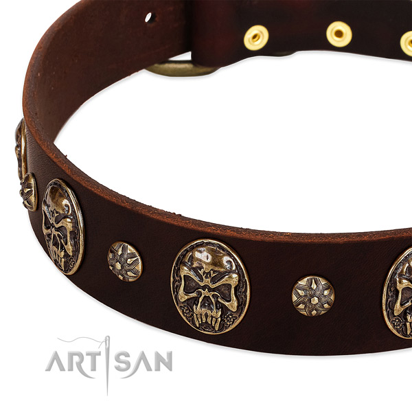 Reliable traditional buckle on full grain genuine leather dog collar for your canine